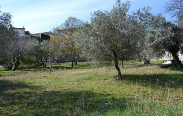 Maison+Terrain à vendre .(76 m²)(SAINT BAUZILLE DE PUTOIS) avec (MAISONS BALENCY)