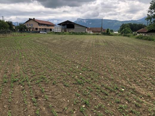 Maison+Terrain à vendre .(100 m²)(TULLINS) avec (MAISONS FRANCE CONFORT)