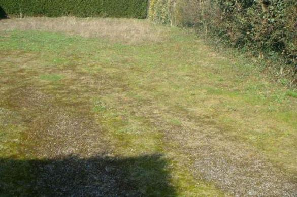 Maison+Terrain à vendre .(76 m²)(OSTRICOURT) avec (MAISONS FRANCE CONFORT)