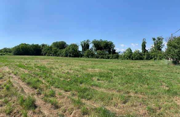 Maison+Terrain à vendre .(80 m²)(MEYRARGUES) avec (LES MAISONS DE MANON)