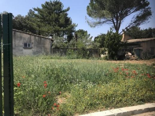 Maison+Terrain à vendre .(80 m²)(SORGUES) avec (LES MAISONS DE MANON)