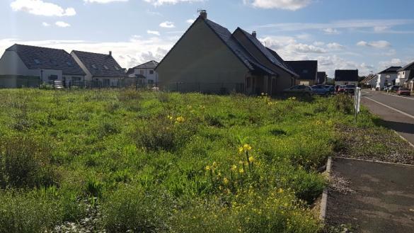 Maison+Terrain à vendre .(60 m²)(VIEILLE EGLISE) avec (MAISONS FRANCE CONFORT)