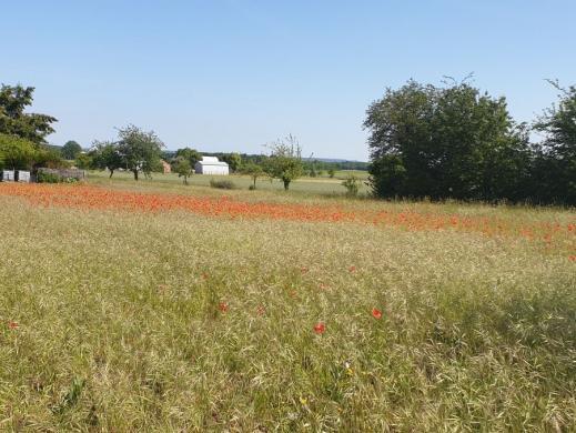 Terrain à vendre .(258 m²)(DARVAULT) avec (Maisons i Montargis)