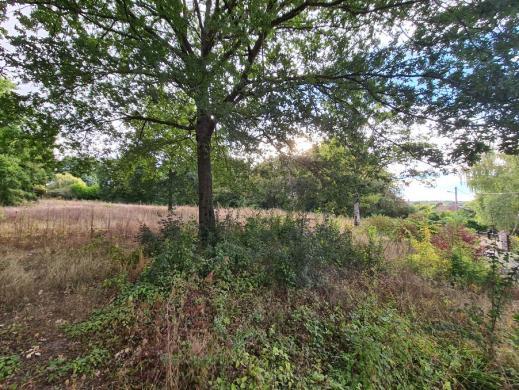 Terrain à vendre .(420 m²)(CELY) avec (Maisons i Montargis)